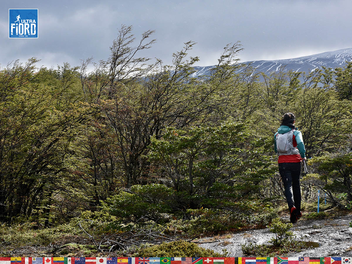utf1904algo1399FB; Ultra Trail Running in Patagonia, Chile; Ultra Fiord Fifth Edition 2019; Torres del Paine; Última Esperanza; Puerto Natales; Patagonia Running Ultra Trail; Alejandro González