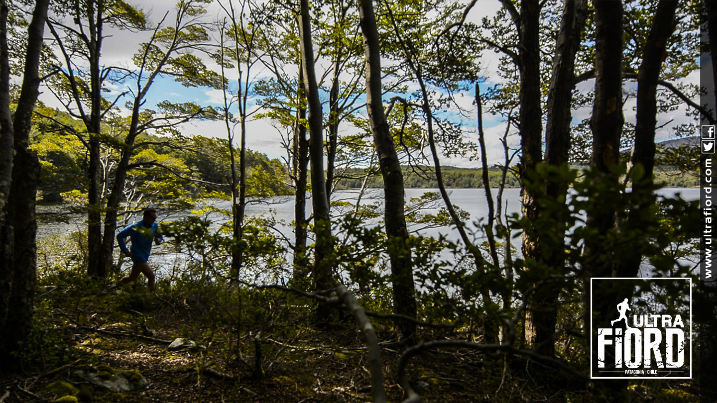 Ultra Trail Running in Ultima Esperanza, Patagonia, Chile; Ultra Fiord Route Forest Running with Fjord Backdrop