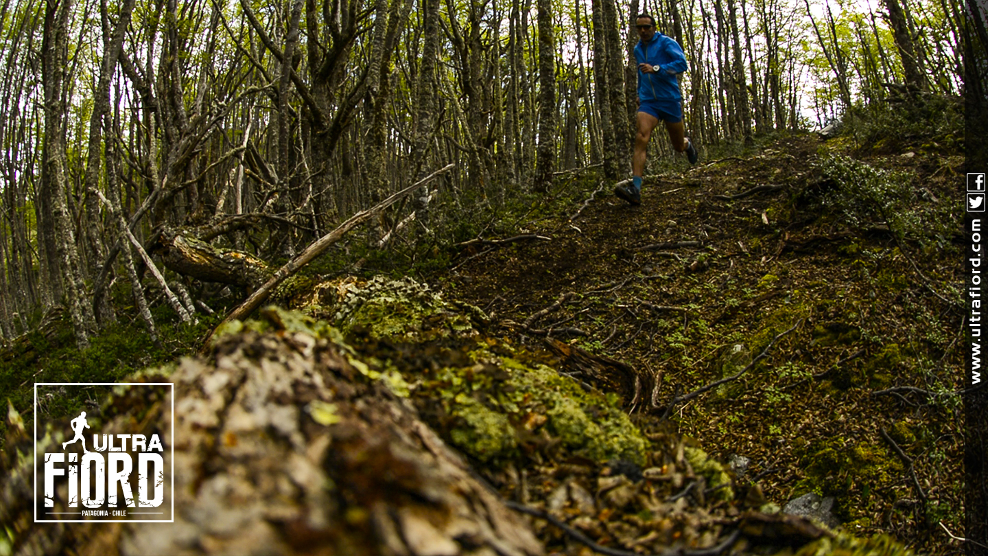 Ultra Trail Running in Ultima Esperanza, Patagonia, Chile; Ultra Fiord Route Forest Trail Running