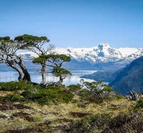 Ultra Trail Running in Ultima Esperanza, Patagonia, Chile; Ultra Fiord Route Fjord Landscape and Scenery