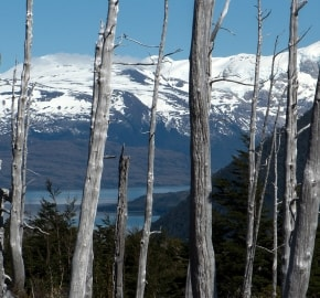 Ultra Trail Running in Ultima Esperanza, Patagonia, Chile; Ultra Fiord Route Fjord and Mountain Pass