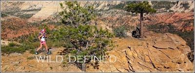 Wild Defined